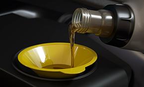 $18.95 Standard Oil Change