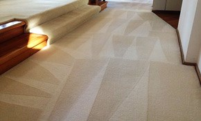 $195 for Four Rooms Rotary/Steam Extraction Deep Carpet Cleaning with Deodorizing, Sanitizing and Spot Removal