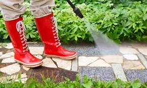 $158 for $175 Credit Toward Pressure-Washing--Townhouses Only