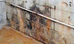 $900 for $1000 Credit Toward Basement Waterproofing