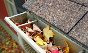 $195 for a Complete Gutter System Inspection