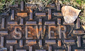 $135.97 Sewer Rooter Service and Televising, Plus Drain Cleaning
