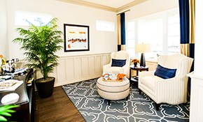 $99 for a Transitional Area Rug Design Consultation Plus Credit
