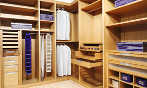 $150 for $300 Worth of Custom Closets