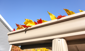 $349 for Tri-Annual Gutter Cleaning