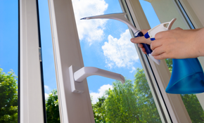 $180 for Interior and/or Exterior Window Cleaning