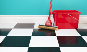 $190 for 5 Labor Hours of Housecleaning