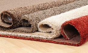 $199 for $300 Worth of Oriental or Area Rug Cleaning