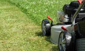 $399 for 8 Hours of Lawn or Landscape Work