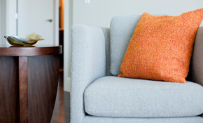 $228 for Sofa and Loveseat Cleaning