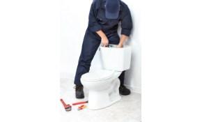 $79 Toilet Rebuild!