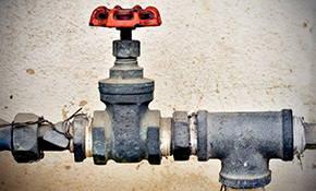 $250 for Drain Cleaning (Main/Sewer Lines)