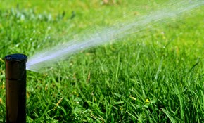 Our Top 10 Best Lawn Irrigation Services In Minneapolis