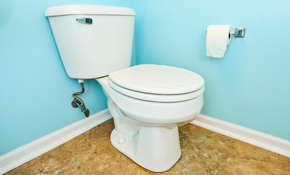 $308 for a New Toilet Installed