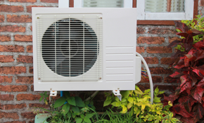 $199 for a Swamp Cooler Start-Up, Cleaning, and Inspection