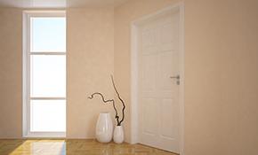 $350 for an Exterior Door Installation