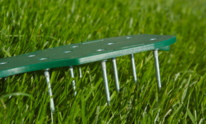 $90 for Lawn Core Aeration