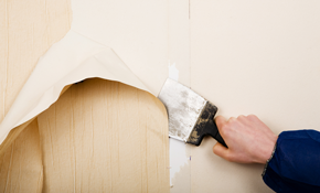 $295 for 8 Hours of Wallpaper Removal