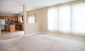$245 Carpet Cleaning for 5 Rooms, a Staircase, and Hallway
