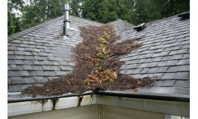 $197 for Full Roof Maintenance with Gutter Cleaning!