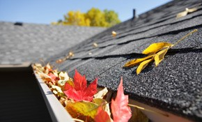 $270 for Gutter Cleaning, Roof Debris Removal, and a Gutter Tune-Up