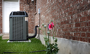 $99 for A/C Inspection, Cleaning and Tune-Up Plus 1 Pound of Refrigerant