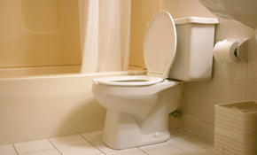 $400 for a New Toilet Installed