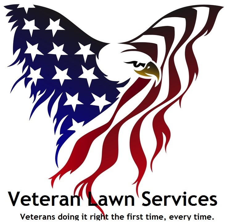 Veteran Lawn Services Llc Reviews Palm Bay Fl Angie