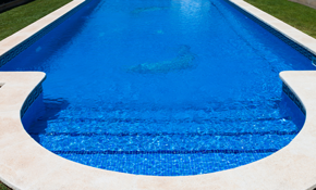 $95 for Pool Filter Cleaning