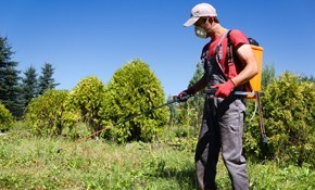 $280 for Annual Pest Control Treatments