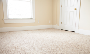 $140 for Carpet Cleaning in Three Rooms