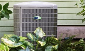 $49 for a Central A/C Inspection, Cleaning, and Tune-up