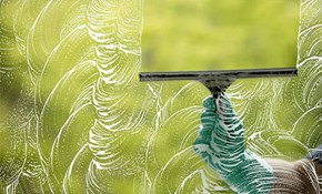 $250 for Window and Screen Cleaning