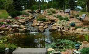$49 for Complete Waterscape Design and Consultation