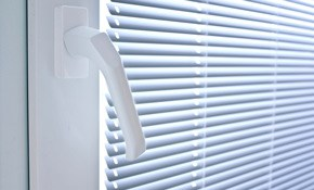 $19.99 for Mini Blind Cleaning