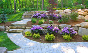$299 for a Complete Design of Renovating or Installing a New Landscape with $250 Credit