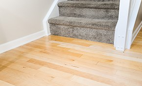$1,800 for 300 Square Feet of Birch Hardwood Flooring Installed
