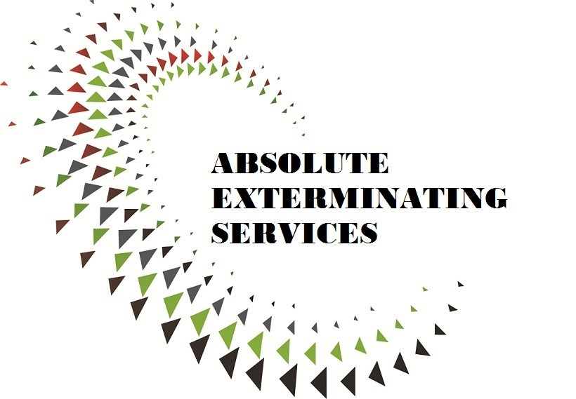 Absolute Exterminating Services logo