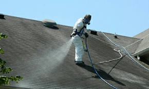 $150 Roof Cleaning Package