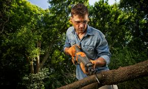 $400 for $500 Toward Tree Service