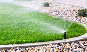 $150 Comprehensive Sprinkler Tune-Up