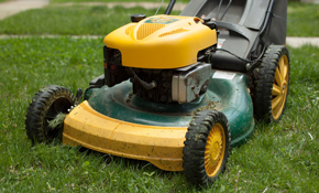$96 for Lawn Mower Tune-Up