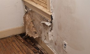$100 for a Visual Mold Inspection + $200 Remediation Credit!