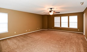 $4,800 for Interior Painting Package -- Premium Paint Included
