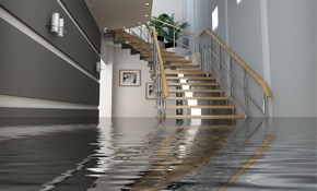 $56 for $300 Worth of Basement Waterproofing Bucks - Free Inspection/Analysis and Written Estimate Too!