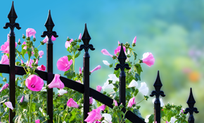 $900 for $1,000 Credit Toward a New Wrought Iron Fence