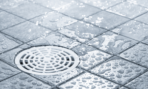 $157 for a Main Line Drain Cleaning