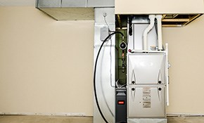 $180 for Furnace Tune-Up - INCLUDES Combustion Test & New Filter!