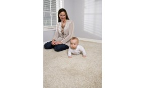 $59 for Installation of a Room of Carpet!