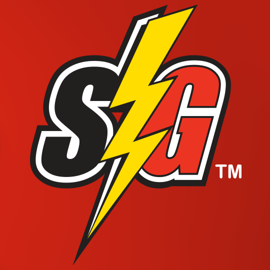 Storm Guard Roofing and Construction logo